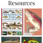 Fish Unit Study Resources including educational fish videos, fish unit study lapbooks and printables, fish craft projects and more fish unit study ideas.