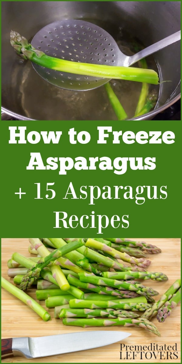 Learn how to freeze asparagus and try these 15 asparagus recipes, including asparagus breakfast dishes, asparagus pasta dishes, asparagus fries, and more!