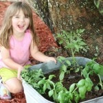 How to Grow a Pizza Garden with Kids
