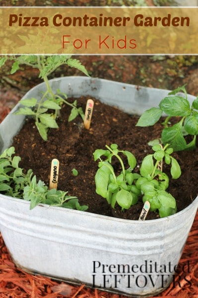 How to Grow a Pizza Garden with Kids - Growing a garden of pizza ingredients is a great way to get kids excited about gardening.
