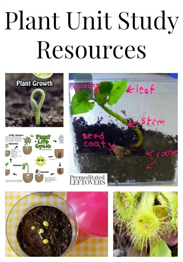 Plant Unit Study Resources including plant lesson plans, plant printables, plant lapbooks, plant videos and plant books for kids.
