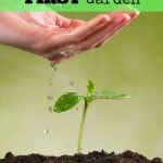 How to Start Your First Garden- Are you a first time gardener? These useful tips will get you started and help make your first year of gardening a success!