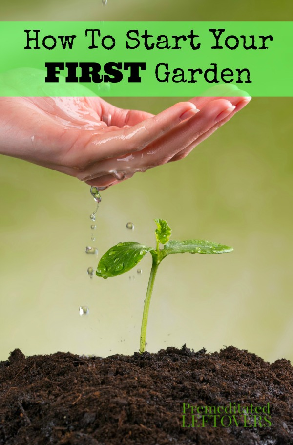 Superbe How To Start Your First Garden  Are You A First Time Gardener? These Useful