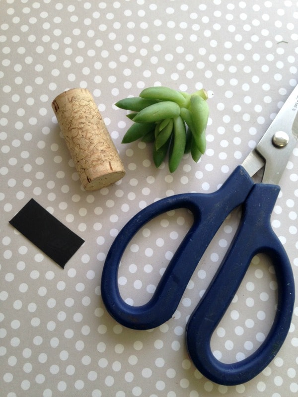 Supplies Needed for Magnetic Wine Cork Planters for Succulents