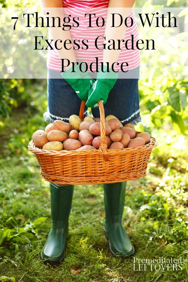 7 Things To Do With Excess Garden Produce