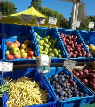 Farmers' Markets in the Reno, Sparks, and Tahoe Area