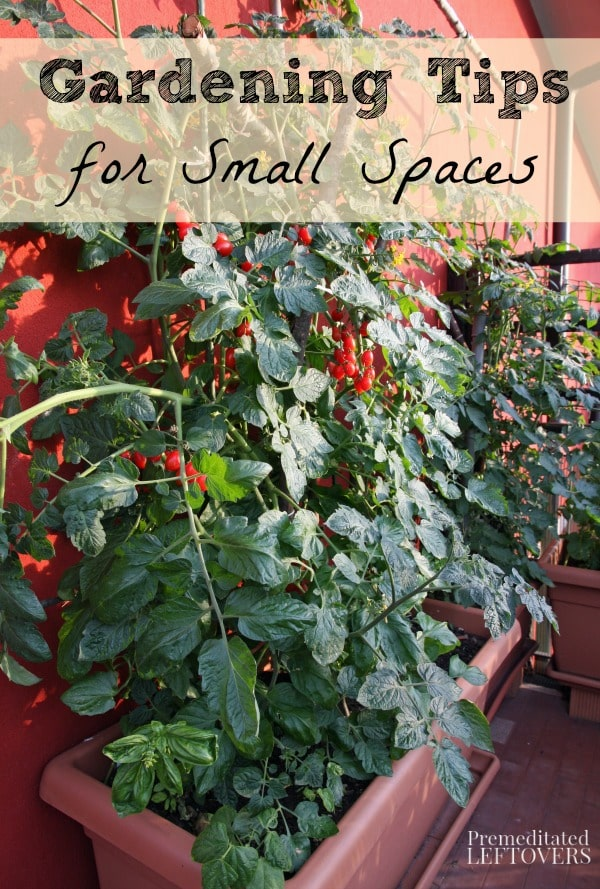 Gardening Tips for Small Spaces - Here are some tips for growing gardens in small spaces, such as patios, balconies, and very small backyards.