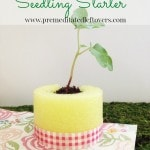 Pool Noodle Seedling Starter- Make these easy seedling starters using pool noodles. They are a frugal way to protect your young garden plants as they grow!
