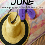 What to buy in June - 70 Items that are on sale or clearance in June