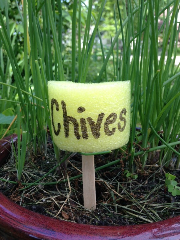 chives pool noodle garden markers