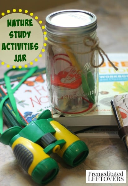 Nature Activity Jar - This nature activity jar filled with items for nature study and exploration is the perfect addition to an afternoon outdoors.