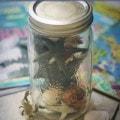 Ocean Life Activity Jar and 6 Ocean Activities
