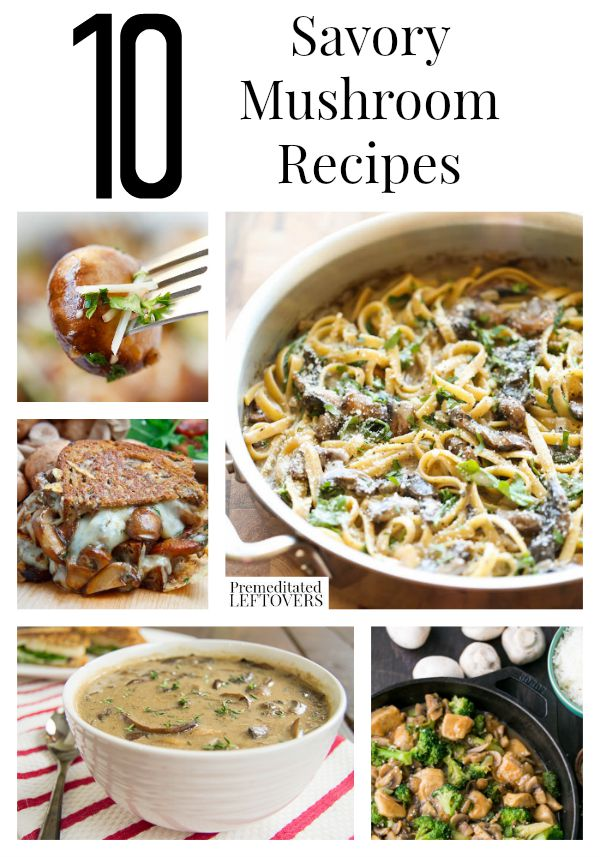 10 Savory Mushroom Recipes- You will find a lot of delicious ways to use mushrooms with these savory recipes. Also, learn how to store and freeze mushrooms.