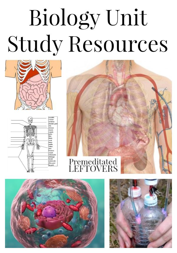 Biology Unit Study Resources