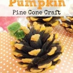 Hand Painted Pumpkin Pine Cones- These little pine cone pumpkins are an easy fall craft for kids. Display them in bowls or scattered across your mantel.