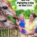 Tips for Enjoying a Day at the Zoo