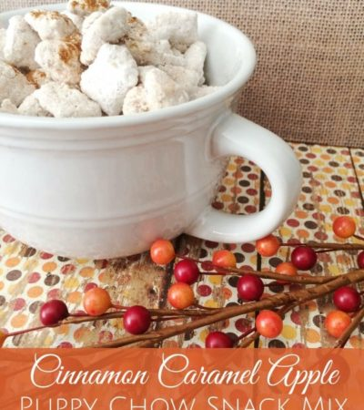 Cinnamon Caramel Apple Puppy Chow Snack Mix- Enjoy the sweet flavors of cinnamon and caramel apple in this crunchy puppy chow recipe. It's sure to be a hit!