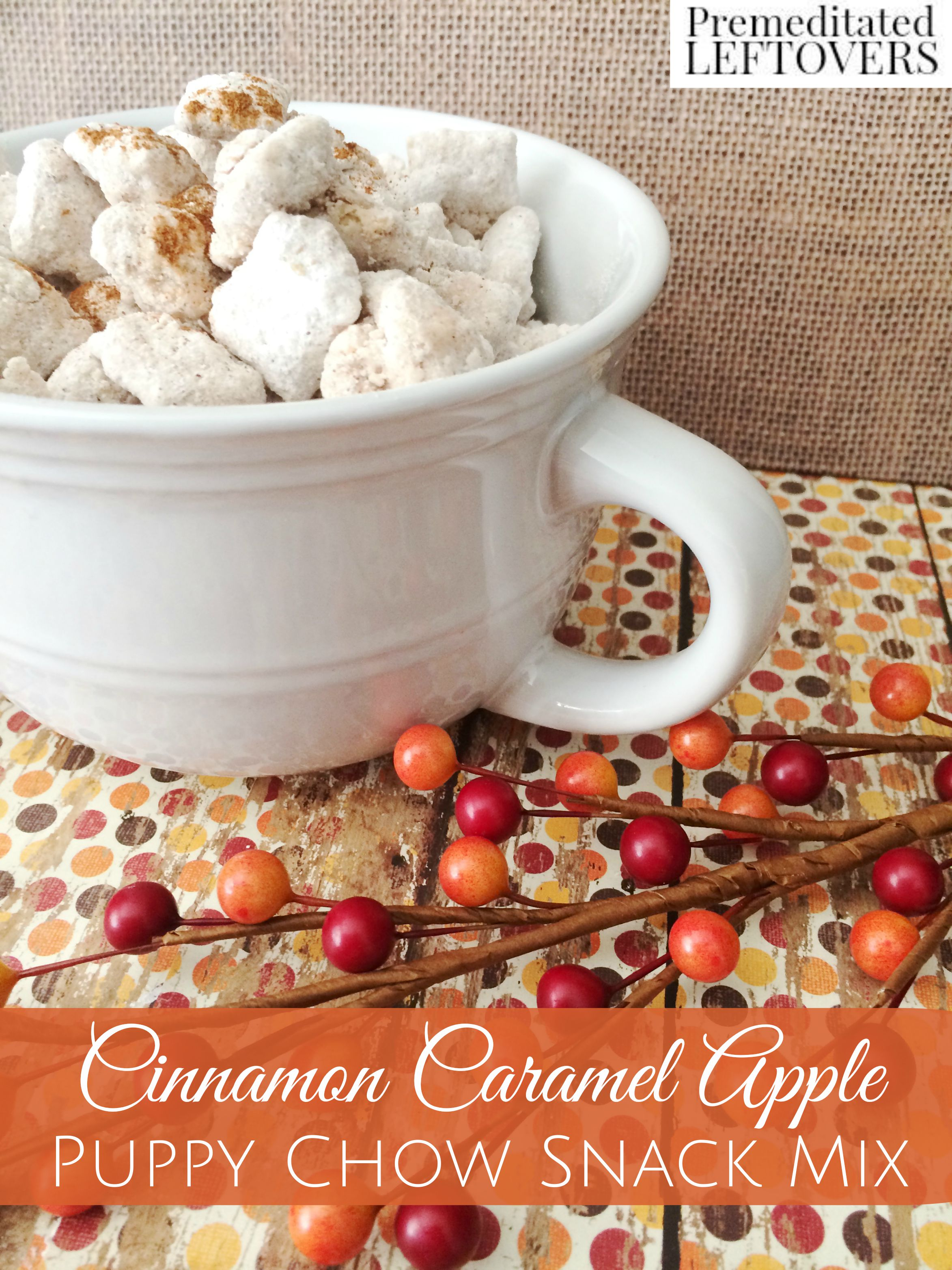 Cinnamon Caramel Apple Puppy Chow Snack Mix Recipe - Enjoy the flavors of cinnamon and caramel apple in this crunchy muddy buddy recipe. Tasty fall snack!