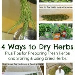 How to Dry Herbs – 4 Methods to Dry Fresh Herbs
