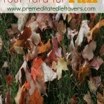 How to Prepare Your Yard for Fall- Use these helpful tips for preparing your yard this fall. You can enjoy a beautiful yard and have less to do come spring.