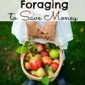 The Lost Art of Foraging to Save Money