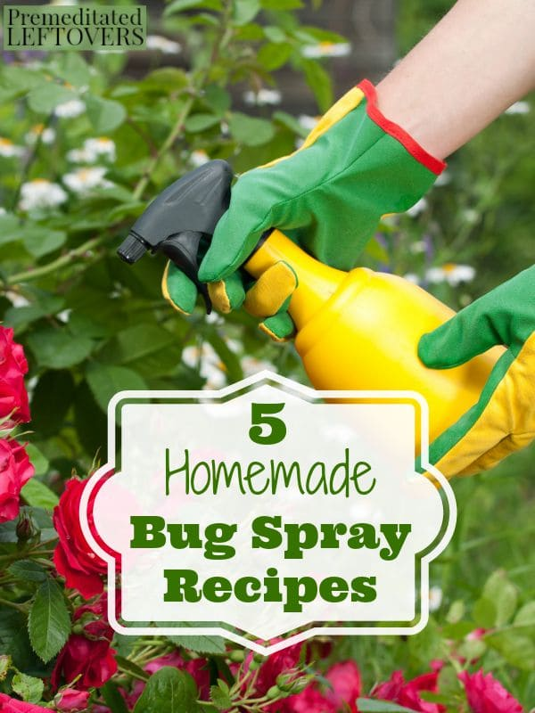 5 Homemade Bug Spray Recipes- Don't let bugs destroy your garden! These DIY sprays will eliminate pests for a fraction of the cost of store-bought products.