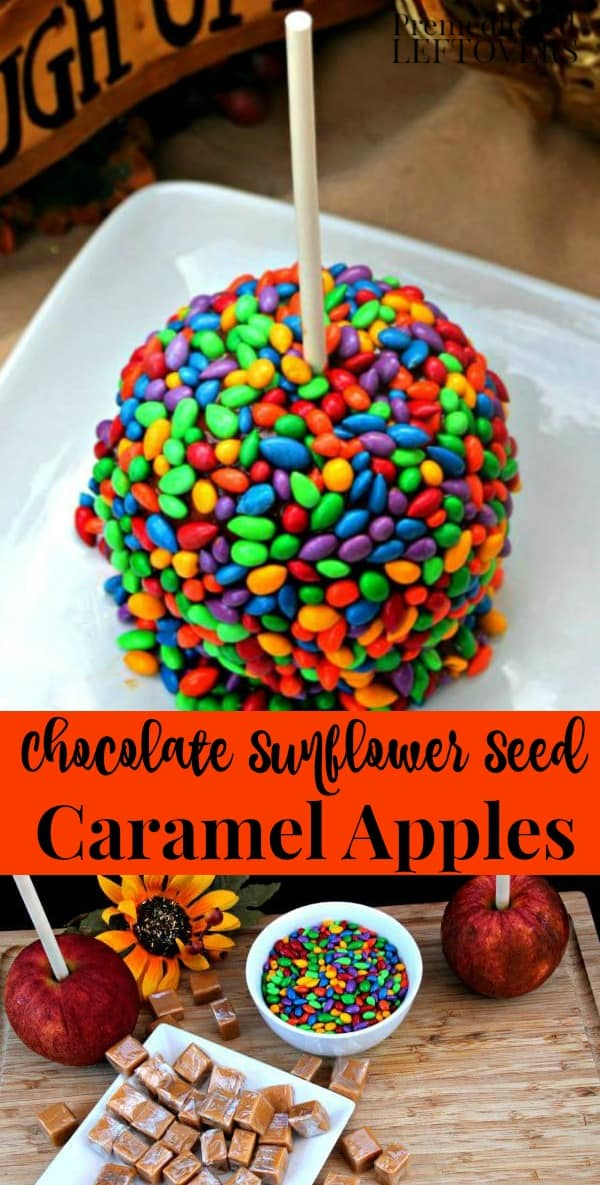 Create a unique caramel apple this fall with this Chocolate Sunflower Seed Caramel Apples Recipe. These upscale caramel apples are not only yummy, but a fun and colorful treat to serve at fall parties.
