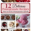 12 Delicious Pomegranate Recipes- Learn how to quickly seed a pomegranate. Once you have the juicy seeds, you can try these wonderful pomegranate recipes!