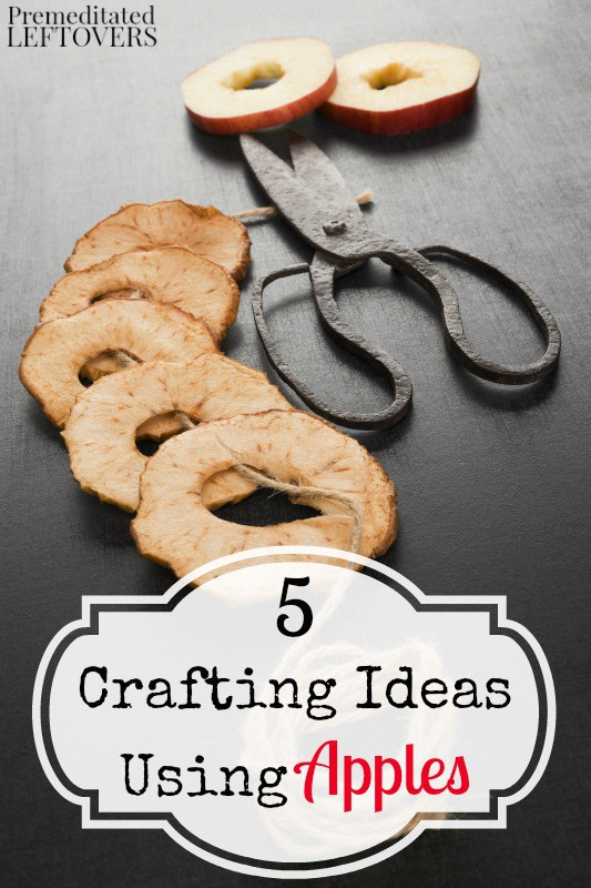 5 Crafting Ideas Using Apples- Crafting with apples can be easy and fun, you just need a little inspiration. Try these 5 simple apple crafts this season.