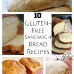 10 Gluten-Free Sandwich Bread Recipes