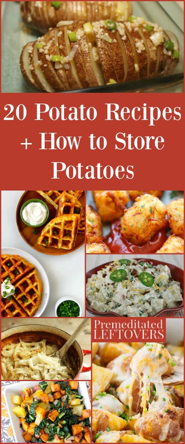 Learn how to store potatoes so they keep longer in your kitchen. You'll put your spuds to good use in these 20 potato recipes!