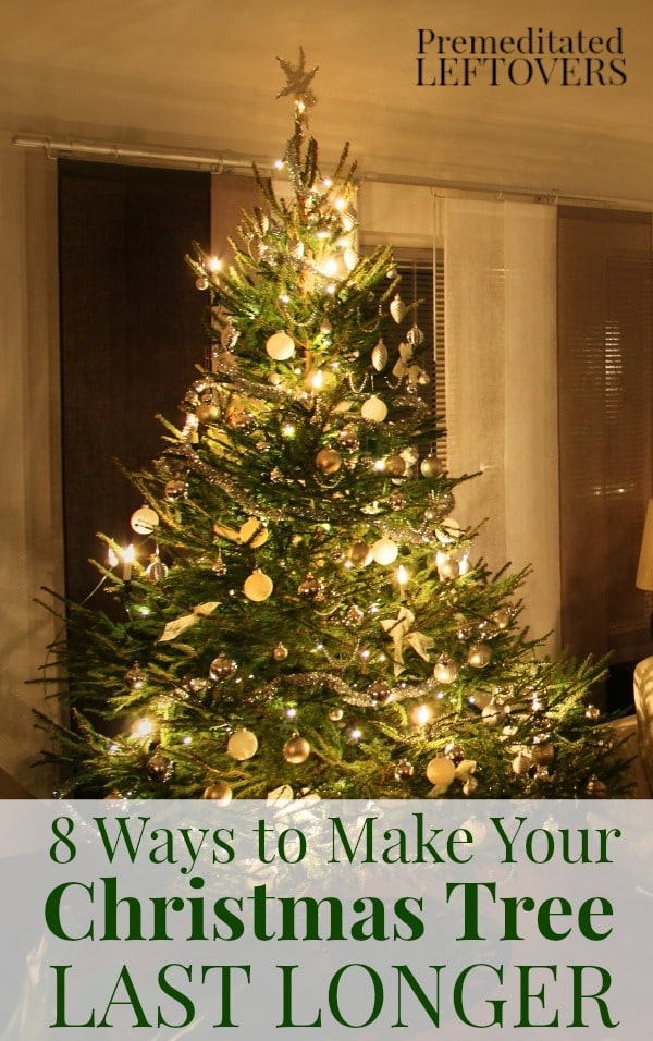 Looking for ways to Make Your Christmas Tree Last Longer?These 8 helpful tips will show you how to care for your Christmas tree so you can enjoy for all of the holiday season!