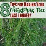 8 Ways to Make Your Christmas Tree Last Longer