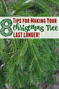 Easy tips for making your Christmas tree last longer.