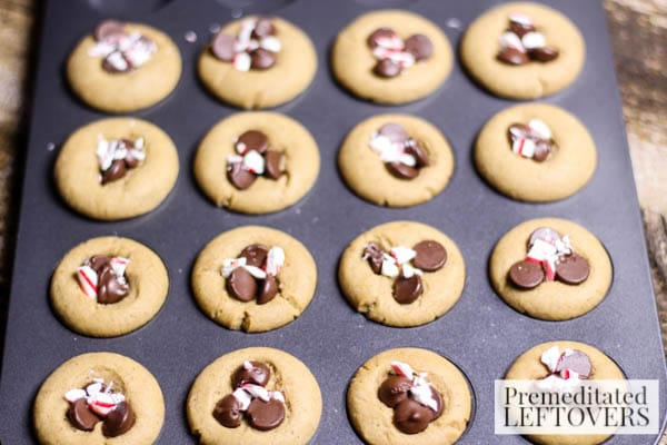 Mini Chocolate Chip & Peppermint Gingerbread Cookies