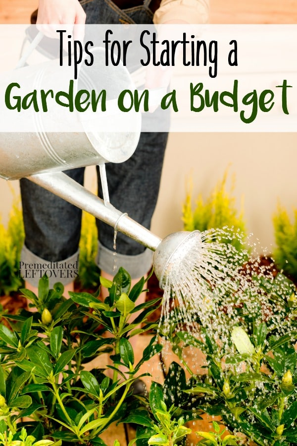 Frugal Gardening Tips: How to Start a Garden on a Budget- You can start growing your own garden without a lot of money. These frugal tips will show you how.