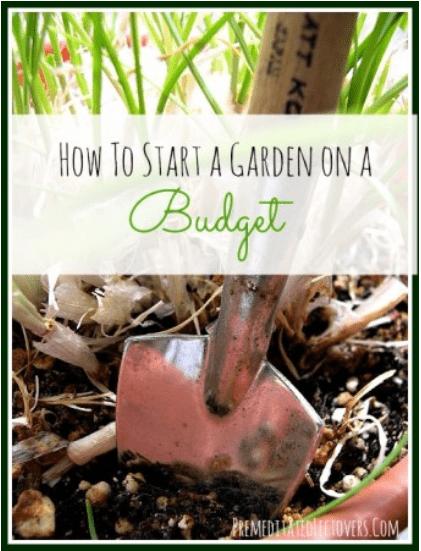 gardening frugally