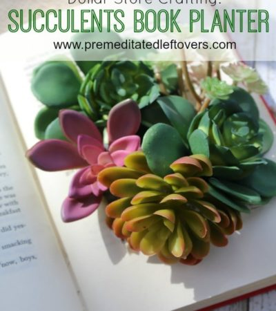 DIY Succulents Book Planter- This book planter costs little to make and nothing to maintain. It's such a simple and darling way to add plants to your home.