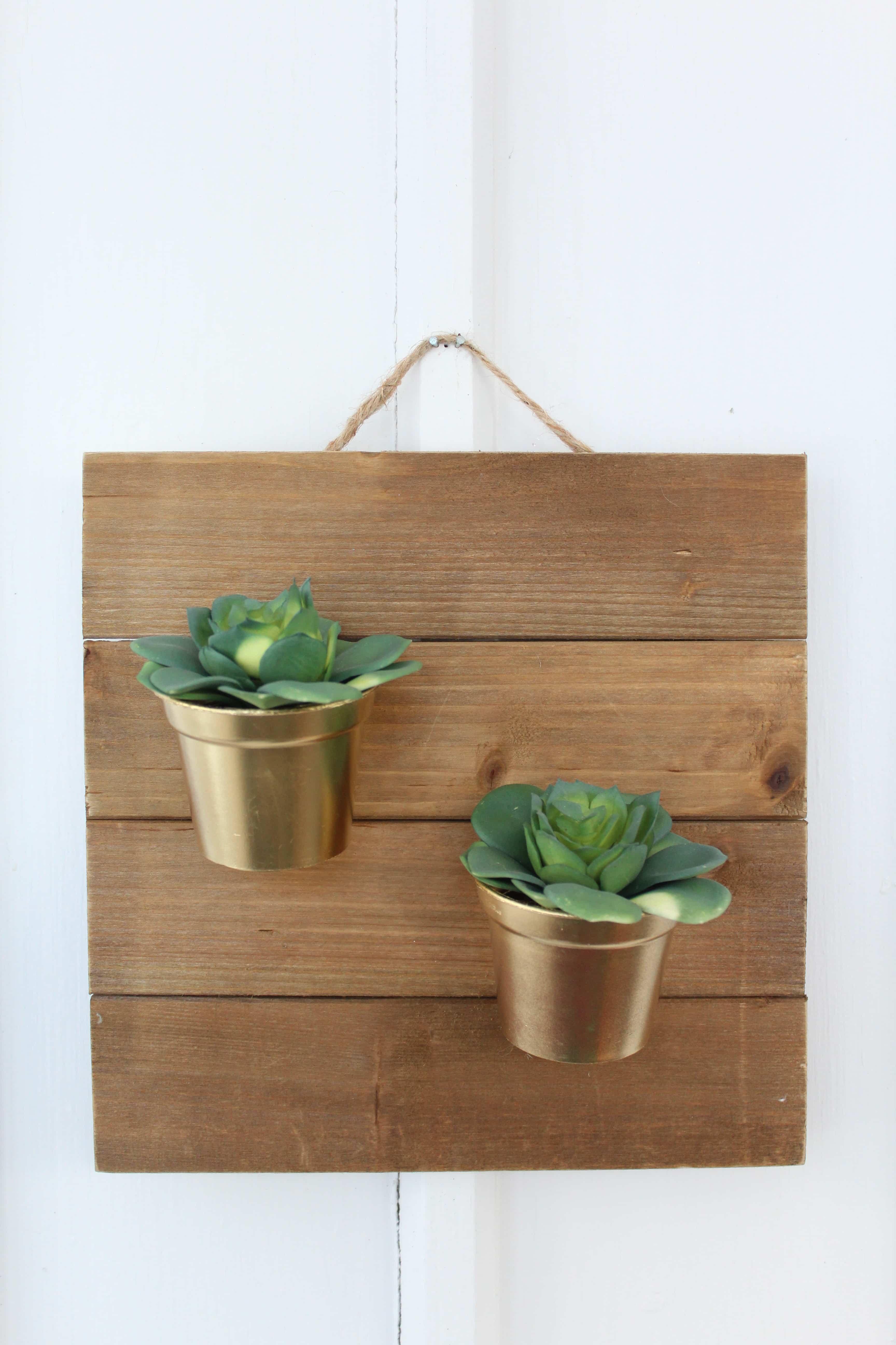 Diy Succulents Wall Hanging Tutorial