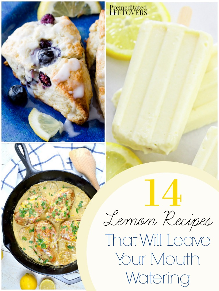 14 Fresh Lemon Recipes- Check out this list of recipes that use fresh lemons for soups, breads, dinner entrees, desserts, and more.