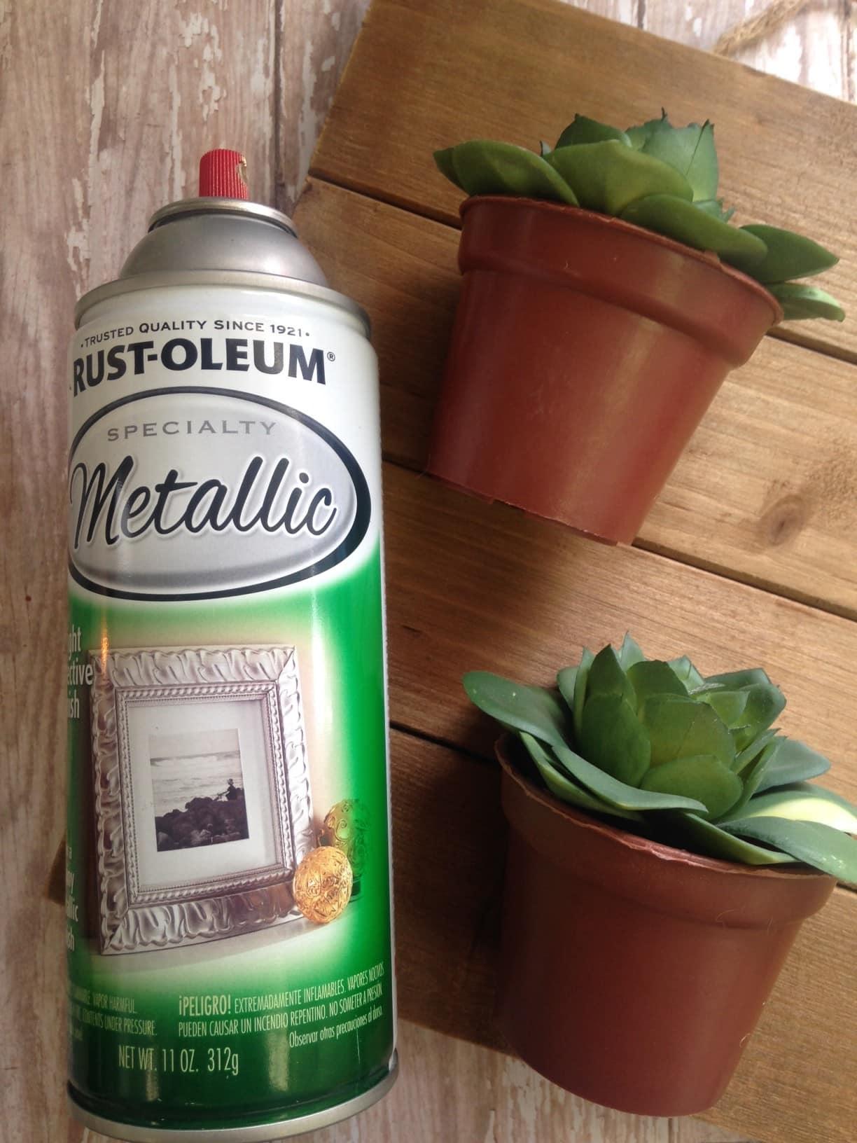 DIY Succulents Wall Hanging materials