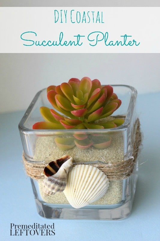 DIY Coastal Succulent Planter- Add a simple touch to any coastal or beach themed room with this homemade succulent planter. It's an easy and frugal project!