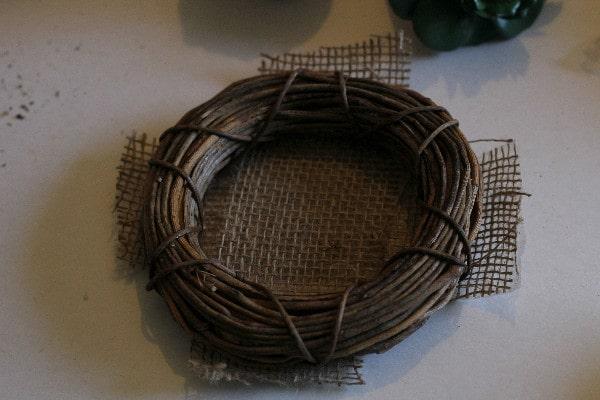 succulent nest glue