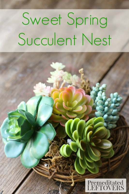 Sweet Spring Succulent Nest- Welcome spring with this sweet and simple faux succulent arrangement. You will love how easy and inexpensive it is to create.