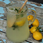 mint lemonade recipe using fresh mint leaves