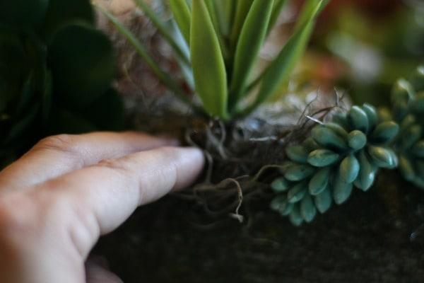 Rustic Faux Succulent Planter adding moss