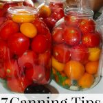 7 helpful canning tips for every season