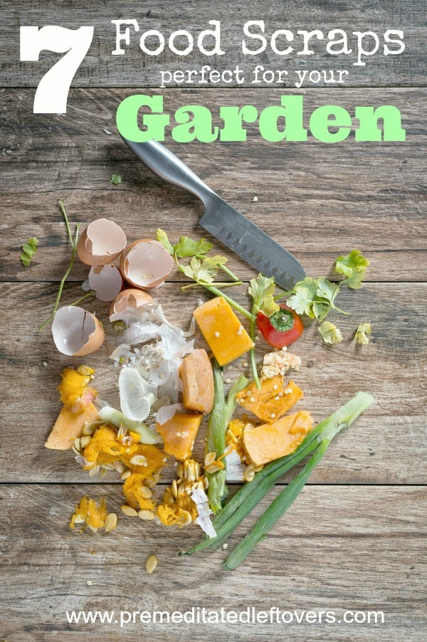 7 Food Scraps That Are Perfect for Your Garden- Don't throw these 7 food scraps away! They are a great way to give your garden a nutrient-filled boost.