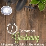 7 Common Gardening Mistakes You Might Be Making- Are you making any of these common gardening mistakes? Correct them this year and watch your plants thrive!