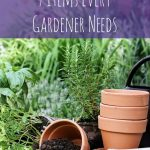 7 Tools Every Gardener Needs- Keep these 7 basic tools on hand to make gardening easier and more efficient. Learn how to properly maintain them as well!